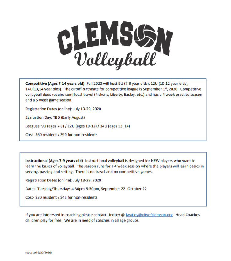 Volleyball informational flyer